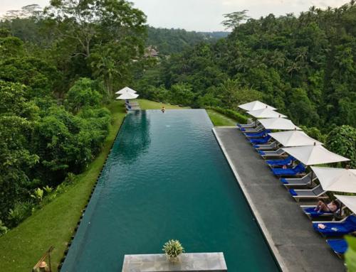 A taste of Bali – YogaMind™ retreat på Bali, marts 2020